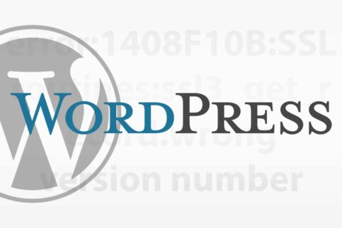 Wordpress API Curl Nginx Ubuntu